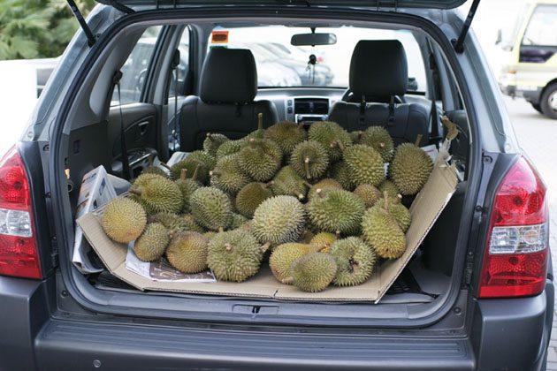 你不知道的事: Durian 异味怎么去除?