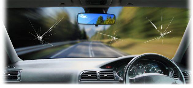P license 新手司机必须要注意的几个要点!