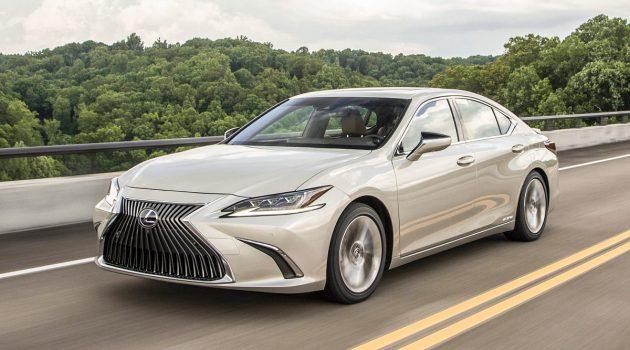 我国备有三种车型, 2019 Lexus ES 官网现踪影!