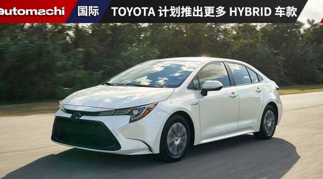 Toyota 配合 NAP2020,计划推出更多 CKD 混合动力车款